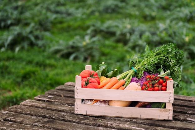 작물 분야에서 야채 가득한 나무 상자