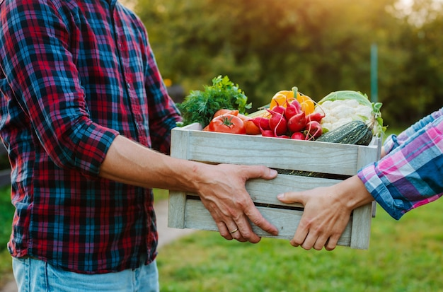 Wooden box with farm vegetables in the hands of men and women, close-up.