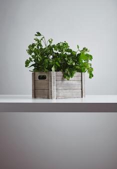 白いテーブルの側面図で隔離の新鮮な緑のパセリとコリアンダーと木箱