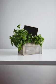 Wooden box with fresh green parsley and cilantro with chalk board price tag inside isolated on white table