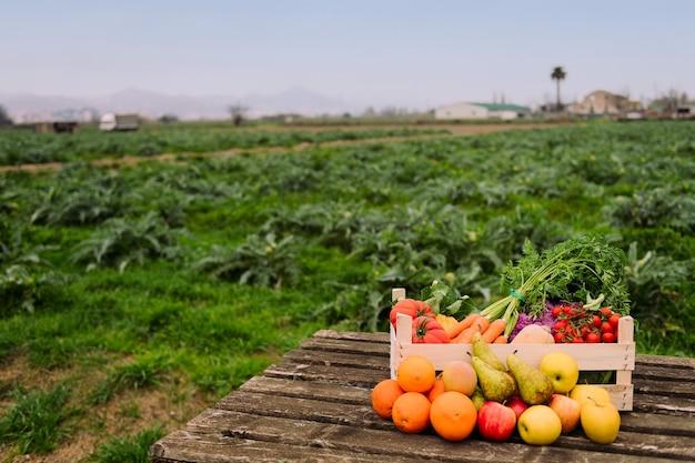 필드에 야채와 과일 나무 상자