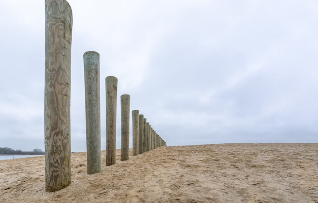 Wooden breakwater poles on a beach under a cloudy sky at daytime