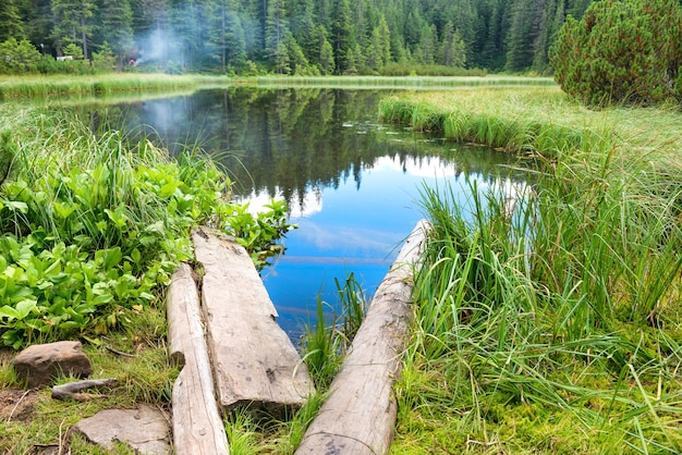 Wooden bridge in blue water at a forest lake with pine trees