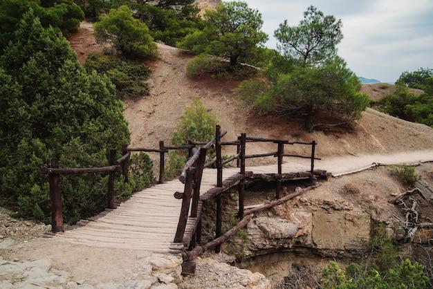 보호된 산악 지역에서 하이킹을 위한 목조 다리