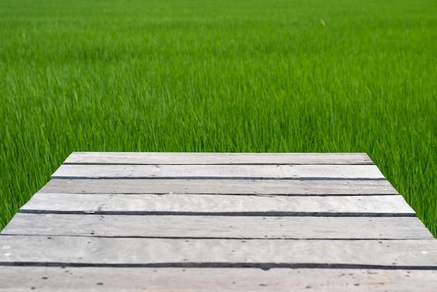 Wooden bridge on green rice fields background