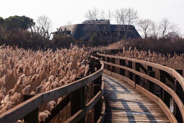 イタリア、ヴァッレ運河ノボの自然保護区にある木造の橋