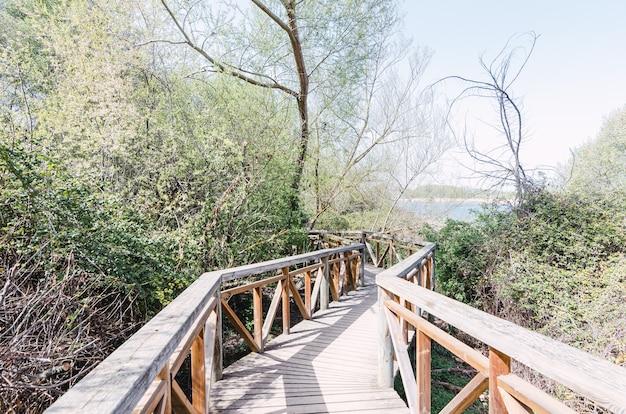 周りに木があるリベラデカストロヌオ川の木造橋