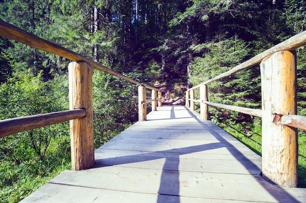観光コースの木製の橋。山の中を歩く