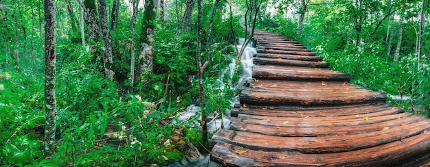 滝に架かる木製の橋