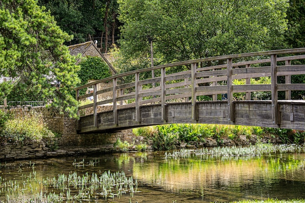Wooden bridge on a river in a green forest