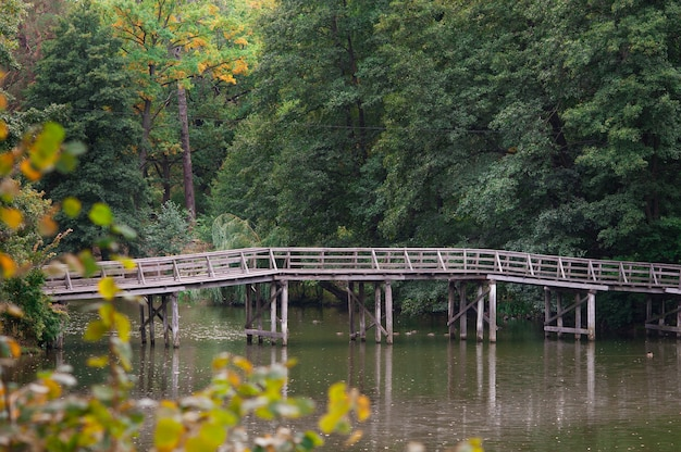 Wooden bridge over the river in the park