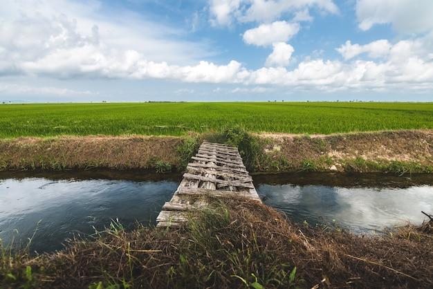 Wooden bridge on river with green field landscape