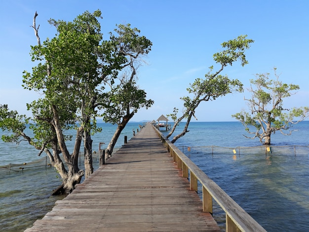 The wooden bridge in the sea with beautiful bright blue sky and some tree by the bridge in the evening.