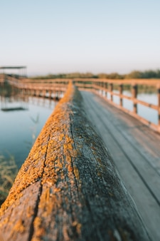 自然の中でフェンスと木製の橋