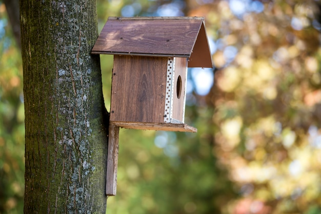 Wooden brown new bird house or nesting box attached to tree trunk in summer park or forest on blurred sunny green foliage bokeh background. wildlife protection, do it yourself concept.