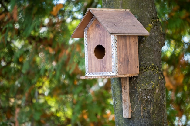 Wooden brown new bird house or nesting box attached to tree trunk in summer park or forest.