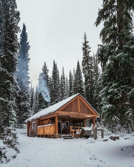 Wooden building of shelter with igniting a fireplace and sale bakery and beverage in lake o'hara