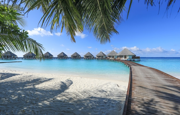 Wooden bungalow on a tropical island maldives