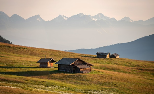 Wooden cabins in a beautiful meadow