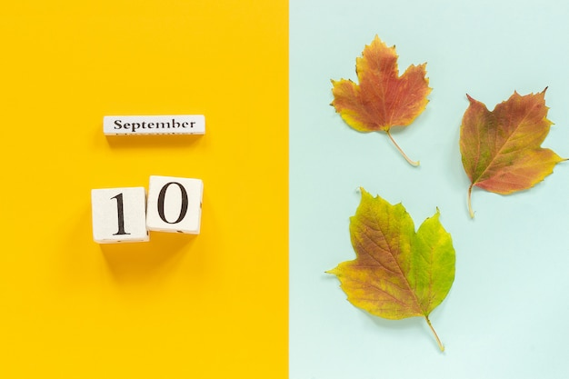Wooden calendar september 10 and yellow autumn leaves