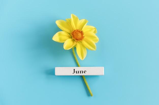 6月の木製カレンダー夏の月と青の背景に黄色の花。コピースペース。最小限のスタイル。