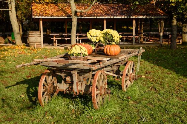 Деревянная тележка с осенними фруктами. праздник осеннего урожая - старая тележка с тыквами. ландшафтный дизайн в стиле кантри на осенний сезон