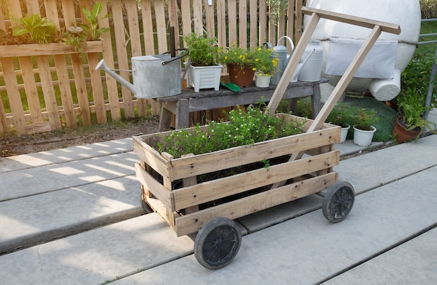 Wooden cart with black wheels with plants inside and watering cans garden equipment in farm
