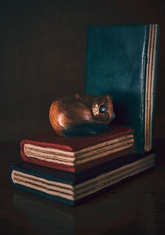 A wooden cat sleeping on old books