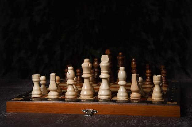 Деревянные шахматные фигуры размещены на шахматной доске.