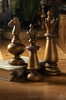 Wooden chess pieces in vintage style