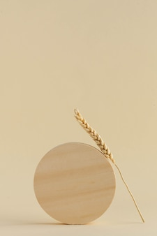 A wooden circle and a wheat spike on a beige background minimalistic stylish trendy concept copy space