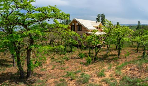 砂漠の豊かな緑に囲まれた木造のコテージ。ゲストハウス。旅行のコンセプト。