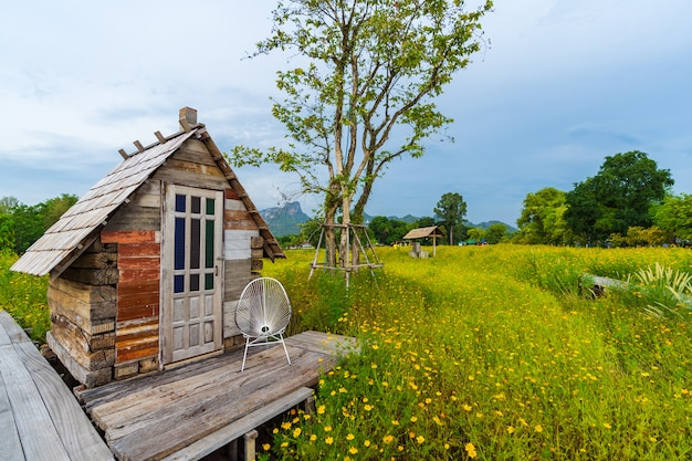 Wooden cottage with yellow cosmos flower field