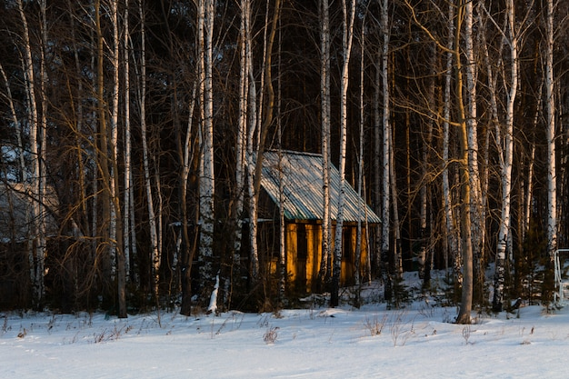Деревянный уютный дом в снежном лесу. хорошая рождественская атмосфера