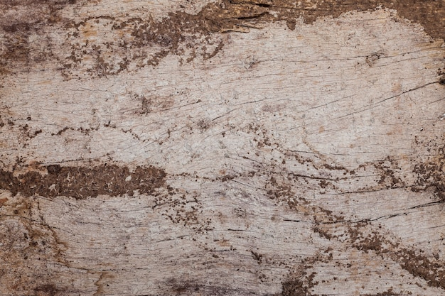 Wooden cracked background texture
