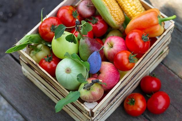 エコファームの野菜や果物がいっぱいの木箱