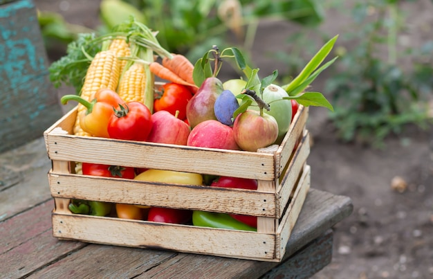 屋外の素朴なテーブルの上の有機農場の野菜や果物の木枠。エコフードコンセプト