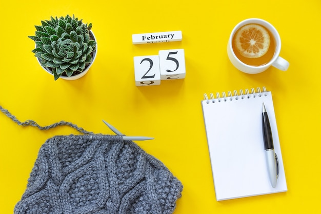Wooden cubes calendar february 25th. cup of tea with lemon, empty open notepad for text. pot with succulent and gray fabric on knitting needles on yellow background. top view flat lay mockup concept