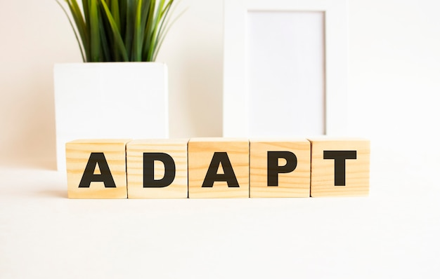 Wooden cubes with letters on a white table. the word is adapt. white background with photo frame, house plant.