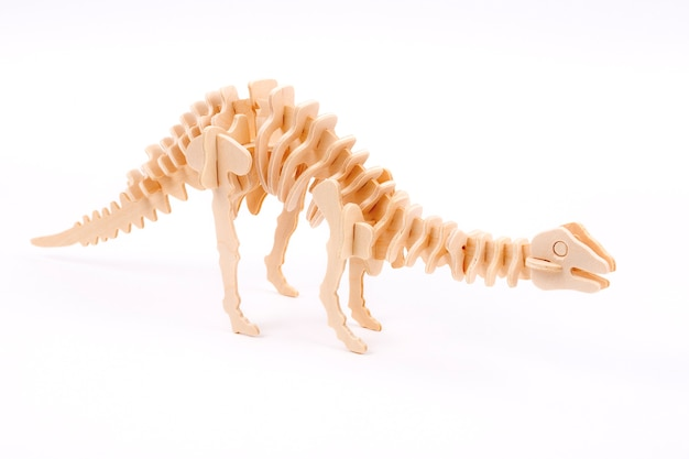 Wooden dinosaur skeleton