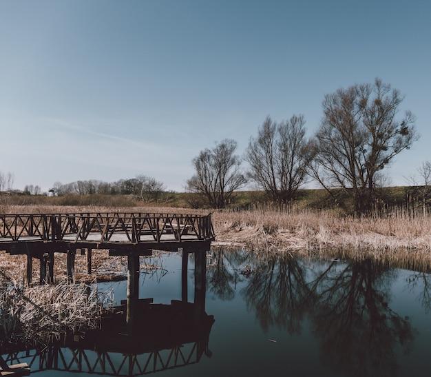 Деревянный причал возле озера с отражением окружающих деревьев