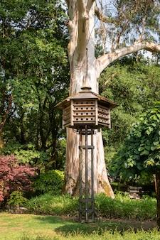 Wooden dovecote on public park