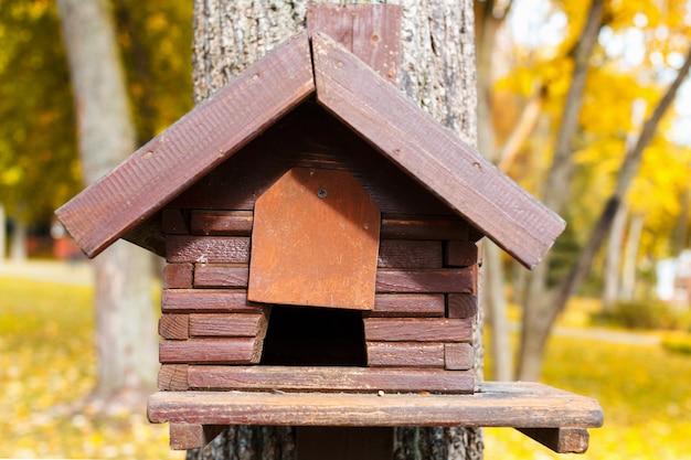Wooden feeder for birds. green background.