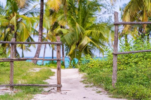 Деревянный забор, кокосовые пальмы и тропа на тропическом пляже у моря на острове занзибар, танзания, восточная африка. концепция путешествия и отдыха