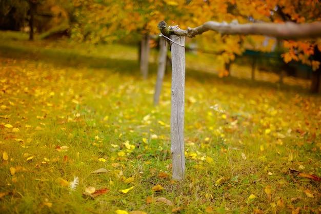 Деревянный забор в деревне на фоне осеннего пейзажа