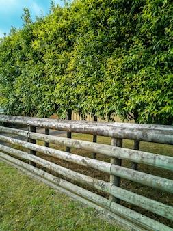 緑の生け垣と木製の柵