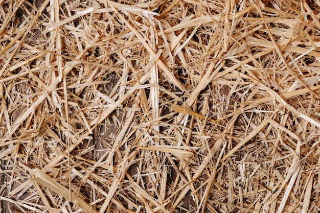 Wooden floor background and dry straw