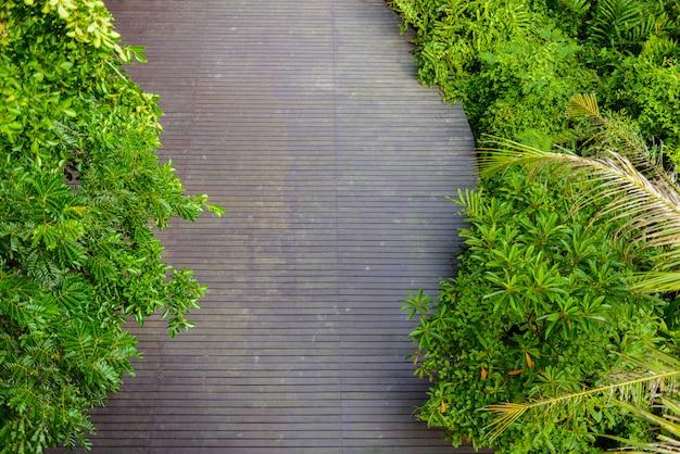 Wooden floor at sri nakhon khuean khan park and botanical garden