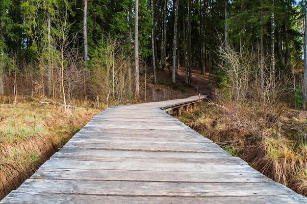 Деревянный пешеходный мост через болото в лес.