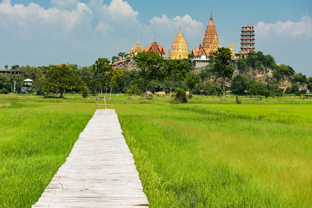 Wooden footpath along rice farm with wat tham sua background at popular travel destinations named meena cafe in kanchanaburi, thailand.